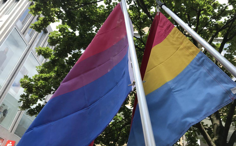 Bi- & Pan-Fahne vor dem grünen Blätterdach eines Baumes